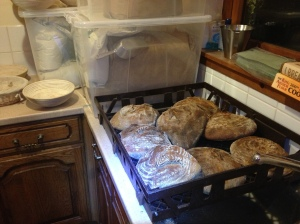 8 Lochaber sourdoughs out the oven