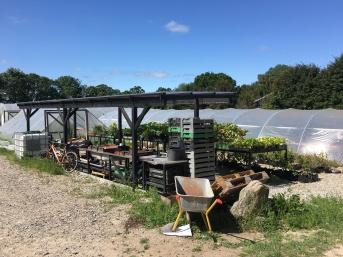 A nice outdoor harvest wash station at Kaló